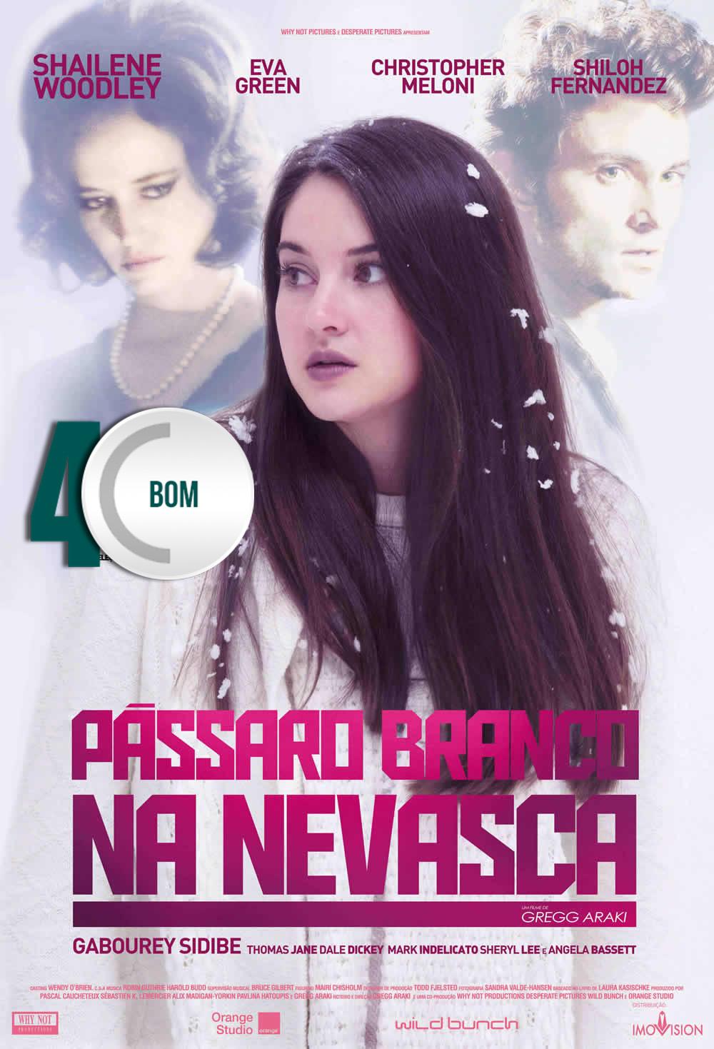 Passaro-Branc-na0Nevasca